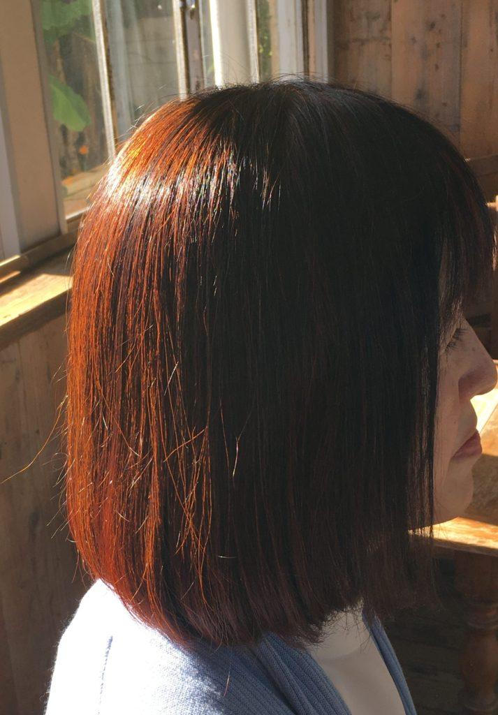 ヘナは白髪にはオレンジ色(ローソニア色素)が髪のタンパク質に絡みついて発色します。